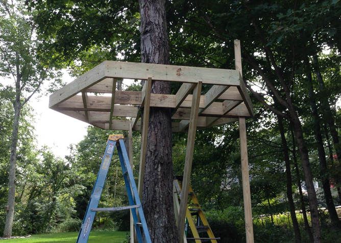 Tips Tricks For Building Your Son 39 S Treehouse The Dad